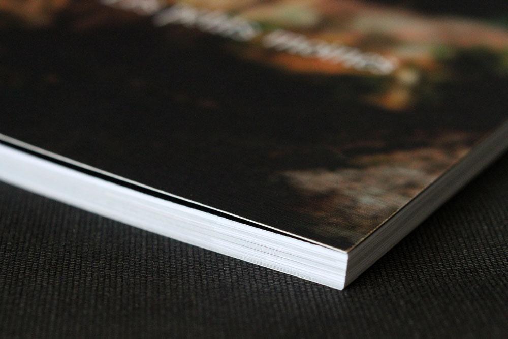 """Couverture du livre """"Les petits moines"""""""