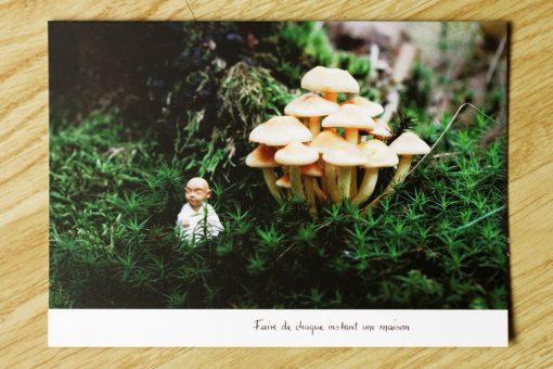 Les petits moines - Carte postale - Maison