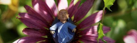 À l'ombre des fleurs