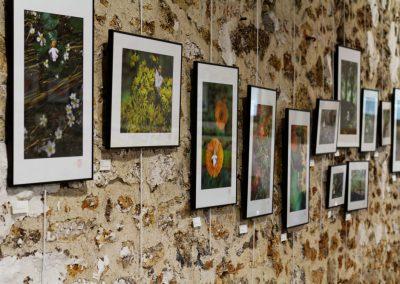 Exposition Longjumeau - Photos petits moines